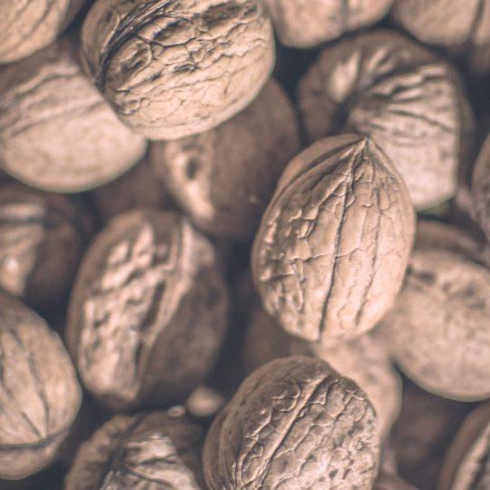 walnut-blasting